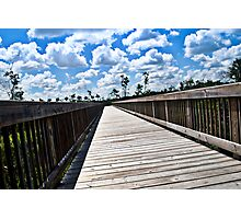Long Nature Boardwalk Photographic Print
