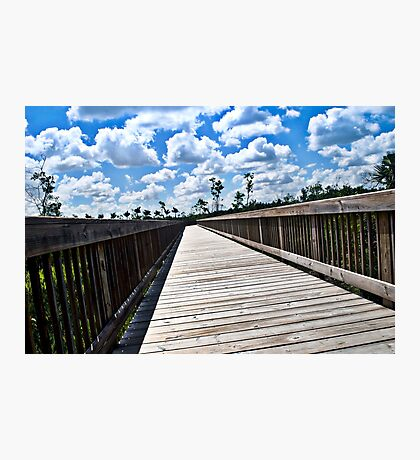 Long Nature Boardwalk Photographic Print