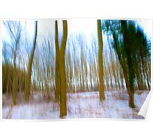 Pastel Woods Poster