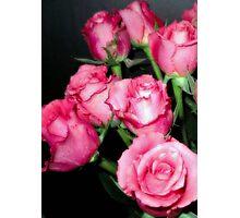 Pink Romance Photographic Print