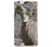 You stare at me, I stare at you iPhone Case/Skin