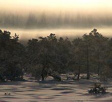 9.1.2010: Under the New Winter Day by Petri Volanen