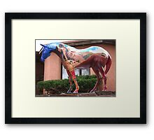 A Painted Horse in New Mexico Framed Print