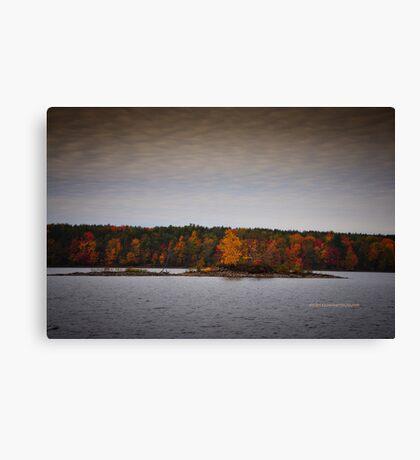 New York's Salmon river reservoir  II Canvas Print
