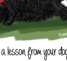 Learn a lesson from your dog . . . Sticker