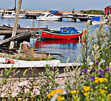 Boats Docked in Visby Sweden Harbor by robert cabrera