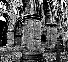 Cathedral Ruins in Dunkeld by Martina Fagan
