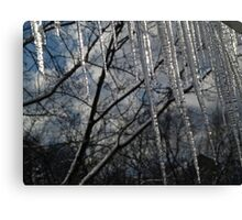 Icicle fence Canvas Print