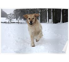 Running through the snow Poster