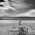 Posts in the sand (B/W) by Jayson Gaskell