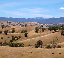 Goulburn River Valley by elizabethdonogh