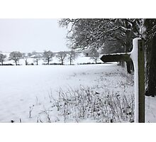 Snowy field Photographic Print