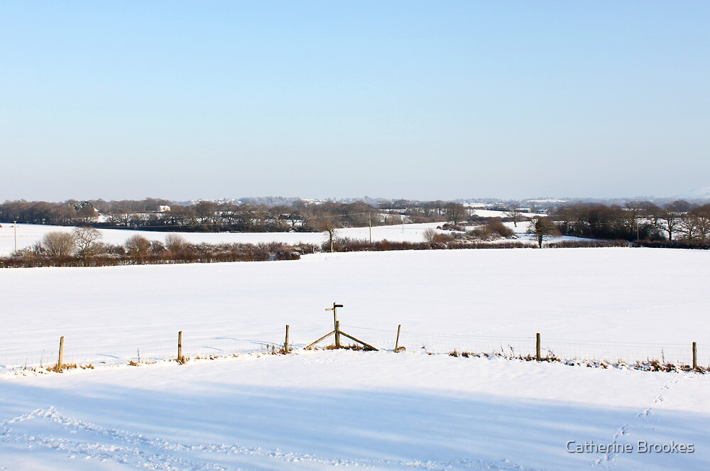 Snowy landscape by Catherine Brookes