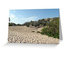 Sand Dune on a Good Day Greeting Card