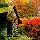 Rural Colors by Stephen Warren