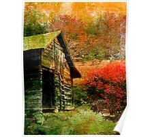 Rural Colors Poster