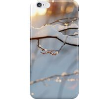 Winter flares iPhone Case/Skin