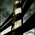 The Line by Carlos Casamayor