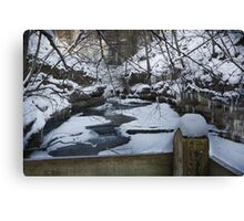 Above the Chaos Canvas Print