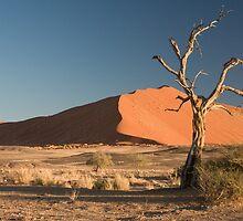 an awe-inspiring Namibia landscape by beautifulscenes