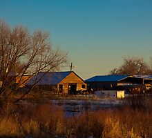 Afternoon on the Farm by Belle Farley