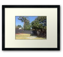 What a beautiful sunny day Framed Print