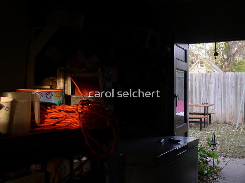 orange out of darkness by carol selchert