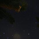 Starry Sky by S S