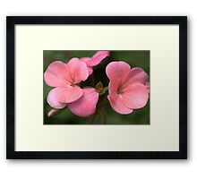Are you feeling Pink or Green? Framed Print