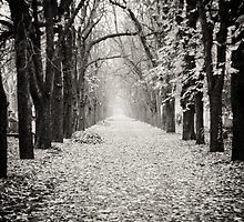 Passage in Black and White by raelynndesign