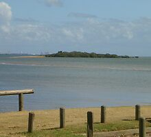Moreton Bay by Gomez88