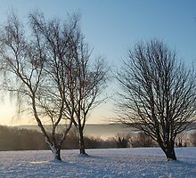 Golf course in the snow by funkybunch