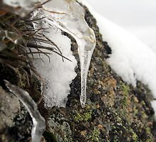 Icicle by Cheryl Parkes