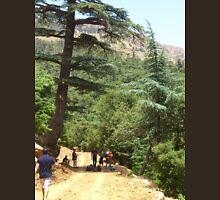a large Algeria landscape Unisex T-Shirt