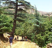 a large Algeria landscape by beautifulscenes