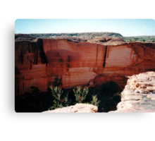 Cliff Face, Kings Canyon Canvas Print