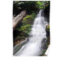 Cuckoo Falls - Tasmania Poster