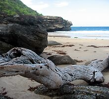 Private Beach by Cheryl Parkes