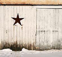 old shed wall by Lynne Prestebak