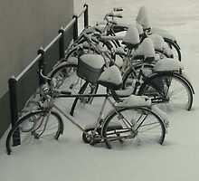 Outside my window - still -20 degrees by Catrin Stahl-Szarka