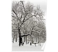 Fabulous snow laden tree in Christchurch Meadows, Oxford Poster