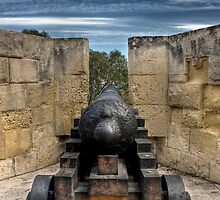 Medieval Cannon by PhotoWorks