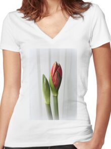 Amaryllis Women's Fitted V-Neck T-Shirt