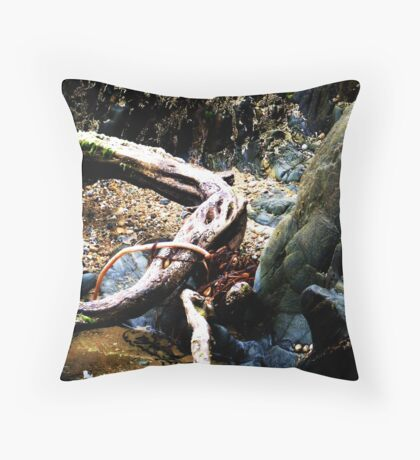 Maelstrom at Lakes Entrance Throw Pillow