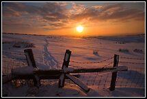 Stilish sunset by Shaun Whiteman