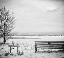 The wrong snow on the view by clickinhistory