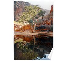 Ormiston Gorge Poster