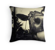 Blessed ... a series of events ... Throw Pillow