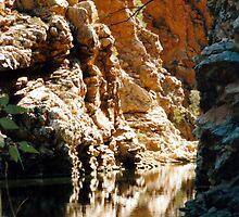 Ellery Creek by Cheryl Parkes