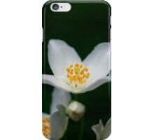 Mock orange iPhone Case/Skin